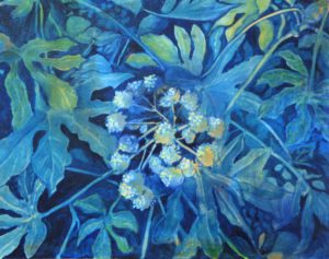 Blue Fatsia Japonica
