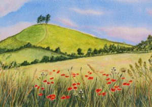 Colmer's Hill Poppies