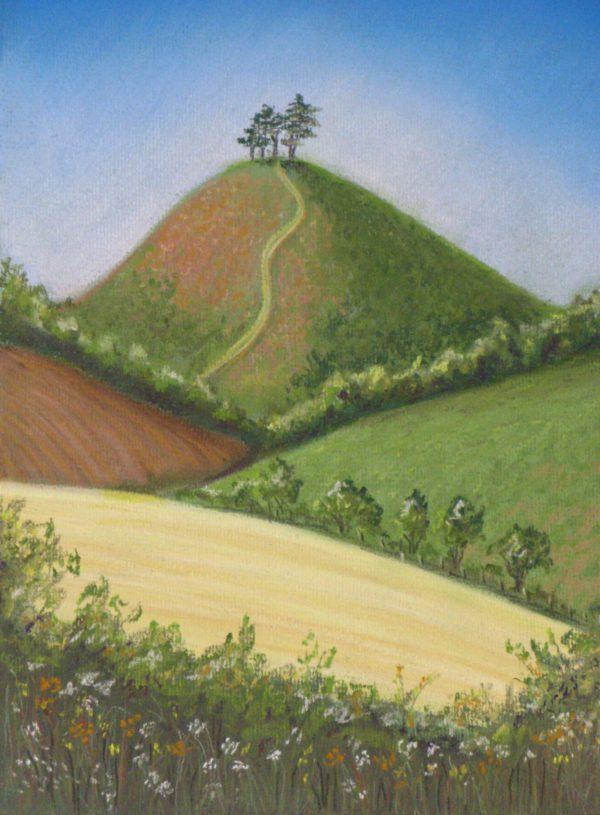 Summer Colmer's Hill