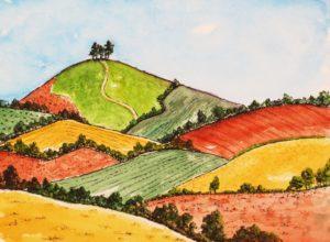 Sunny Colmer's Hill