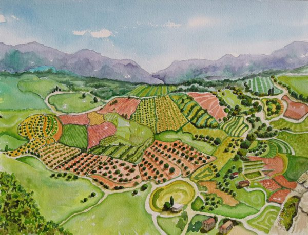 Fields of Ronda, Andalucia