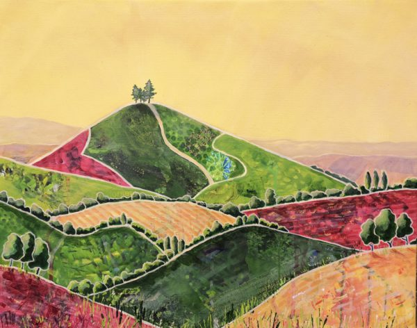 Textured Fields to Colmer's Hill