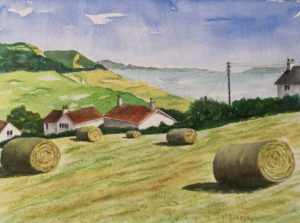 Charmouth Hayfield